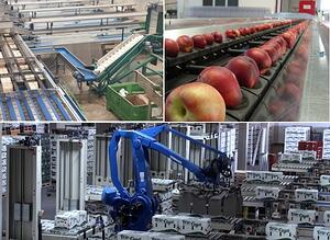 apple automation